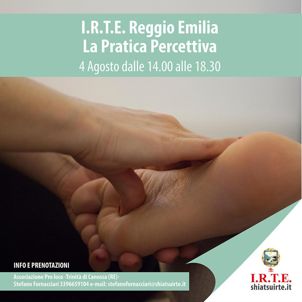 La pratica percettiva - seminario a Reggio Emilia